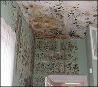 Moho en techos y paredes de vivienda afectada por humedades